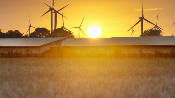 A view of a field and buildings at sunset with wind turbines in the background